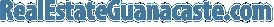 RealEstateGuanacaste Logo SM